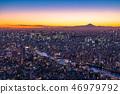 """""""日本的最佳景觀""""東京的夜景 - 富士山的景色""""從天空樹觀景台"""" 46979792"""