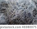 겨울 풍경, 얼음 결정체 배경 46980075