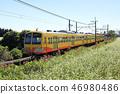 sangi railway, buckwheat field, soba 46980486