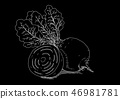 Black picture of beet 46981781