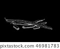Black picture of peas 46981783
