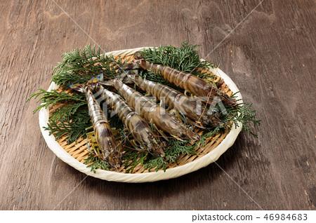 蝦蝦 46984683