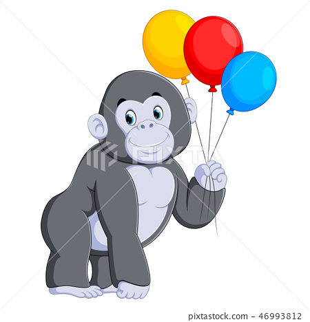 the big grey gorilla standing and holding  46993812