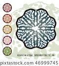 CACTUS08_Astrophytum Asterias 008 46999745
