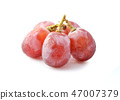 Red grape with water drops 47007379
