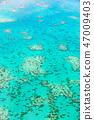 ปะการัง,แนวประการังออสเตรเลีย,มุมมองทางอากาศ 47009403