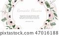 frame background anemone 47016188