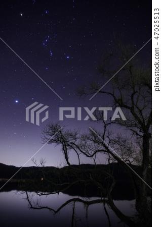 ท้องฟ้าเต็มไปด้วยดาว 47025513
