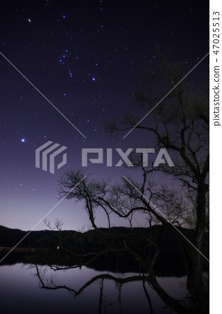 Starry sky 47025513