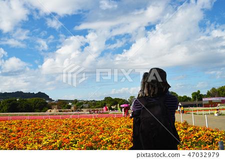 Haru Tengu,現場Hanakai獎花的訪客。 47032979