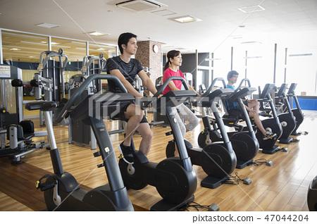 체육관 47044204