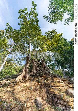 [世界遺產]吳哥考古遺址吳哥城Prea Palilai 47049025