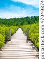 Wooden walking path over tropical coastline 47049874
