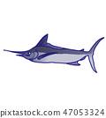 ปลามาร์ลิน 47053324