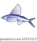 ปลาบิน 47053327