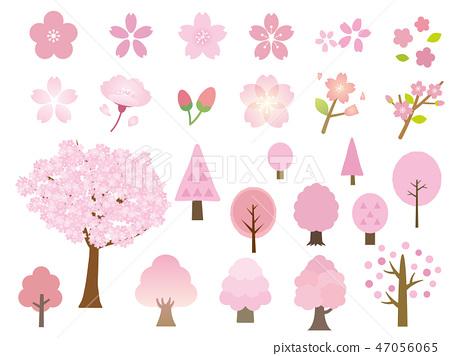 櫻花,櫻花,櫻花樹,素材集 47056065