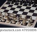 체스 47056896