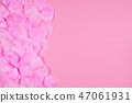 Pink rose petals as a background. 47061931