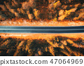 Aerial view of the road in beautiful forest  47064969
