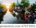 Autumn sunset on the streets and canals of Amsterdam. Befutiful flowers in front 47073691