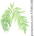 수채화, 수채, 잎 47080188
