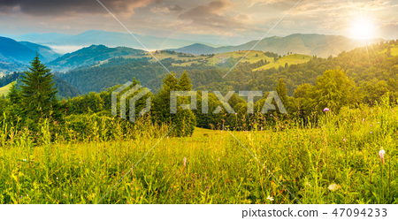 panorama of a meadow in mountains at sunset 47094233
