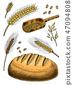 Set of wheat, rye spikelets and corn seeds for making bread and flour. Natural Bunch of cereals 47094808
