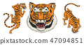 Asian tigers in vintage japanese style for logo. Face Close up. Wild animals cats. Predators from 47094851