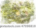 가을 단풍 낙엽 수채화 화풍 47096810