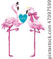 flamingo vector for print design 47097599