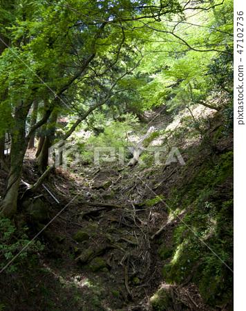 great mountain, heap, mountain 47102736