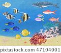 열대의 바다 47104001