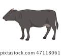 黑毛和牛 47118061