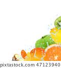 Fruit Splash 47123940