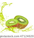 Kiwi with Splash 47124020