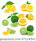 lemon, lime, fruit 47124041