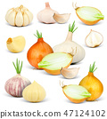 Onions Isolated 47124102