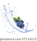 Fruit Splash Isolated 47124215