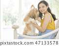 女人寵物的生活方 47133578