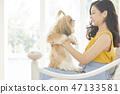 女人寵物的生活方 47133581
