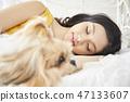 女人寵物的生活方 47133607