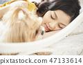 女人寵物的生活方 47133614