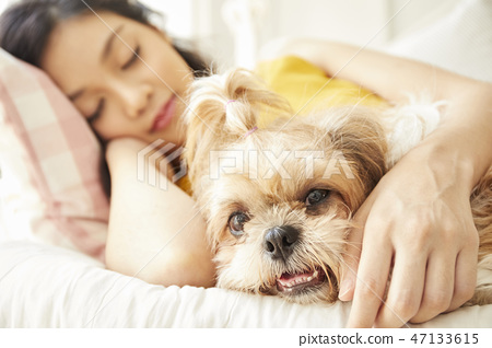 女人寵物的生活方 47133615