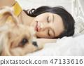 女人寵物的生活方 47133616