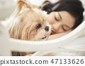 女人寵物的生活方 47133626