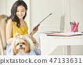 女人寵物生活方式業務 47133631