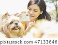 女人寵物的生活方 47133646