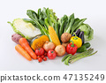 [With clipping path] vegetables 47135249