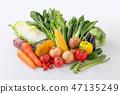 [與剪切路徑]蔬菜 47135249