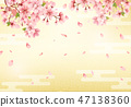Japanese background and cherry blossom 47138360